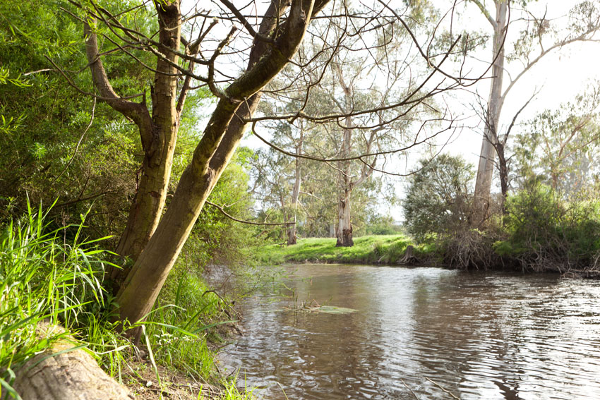 The Yarra River which borders the property