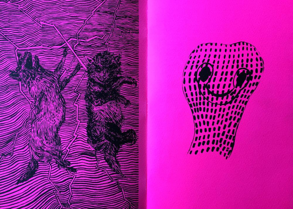 neon2crop.jpg