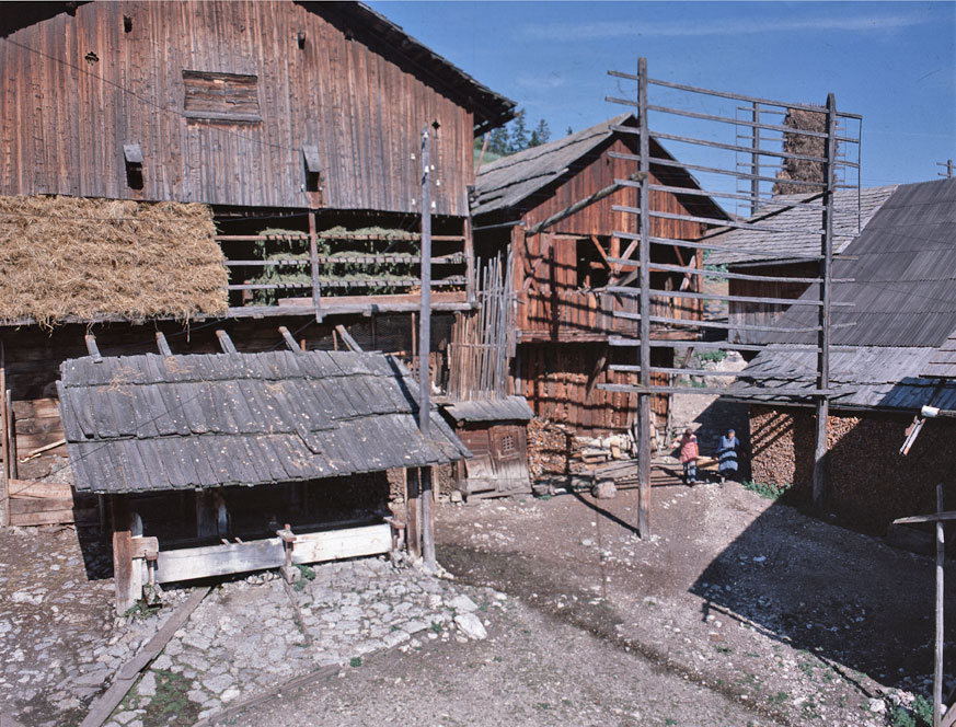 Vila Miscì (©Istitut Ladin Micurà de Rü).