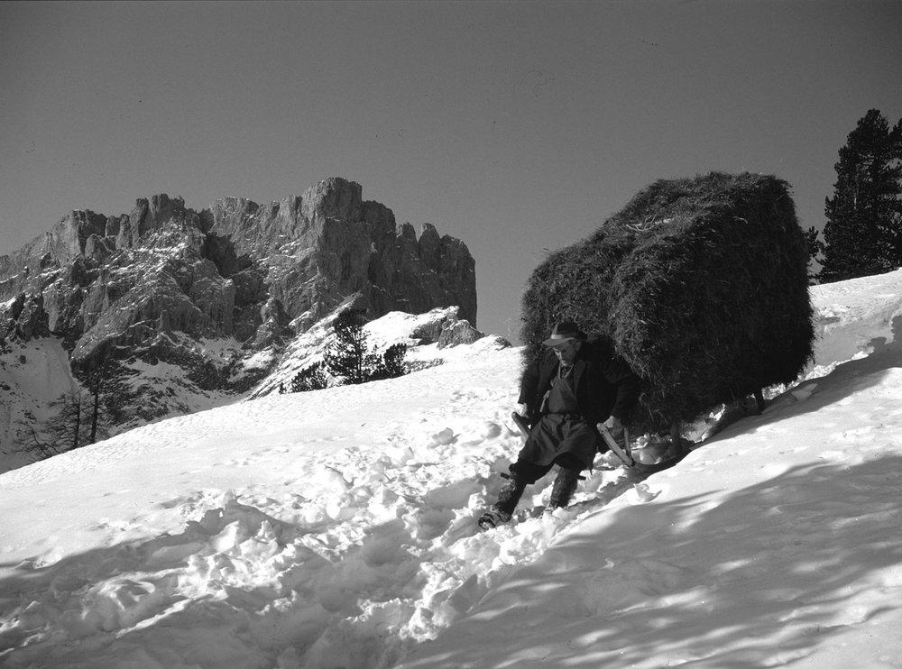 Andare a prendere il fieno di montagna con la slitta (Copyright: Istitut Ladin Micurà de Rü)