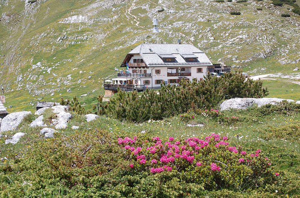 Sennes (Source www.sennes.com).