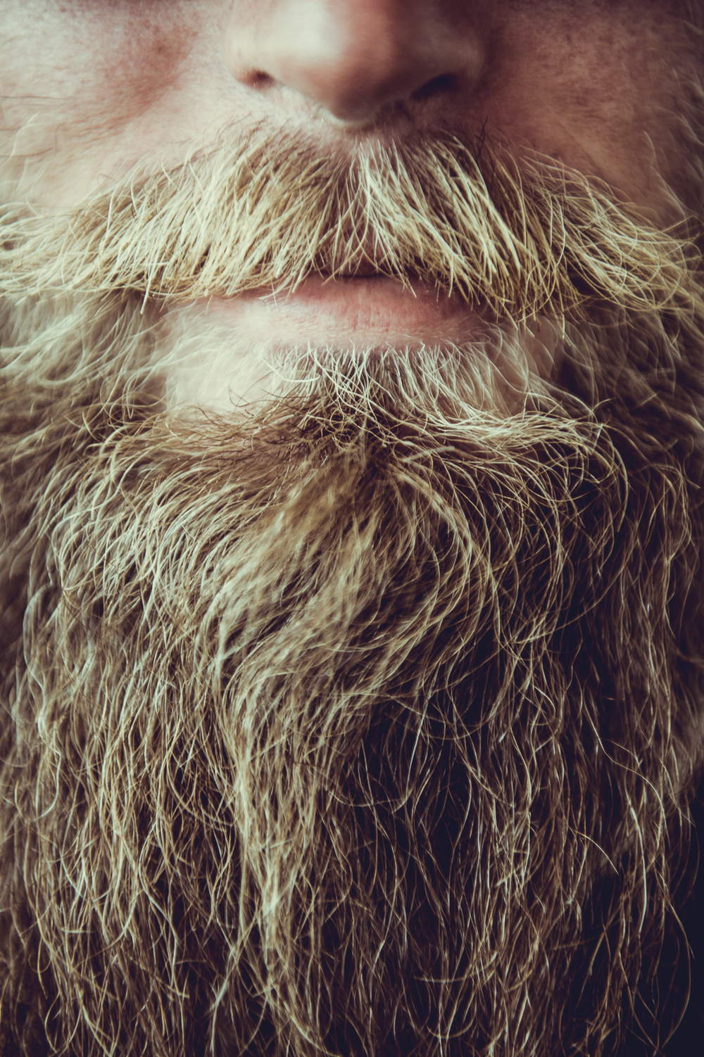 AaronHooper_Beard_Portrait_SilvanoZeiter.jpg