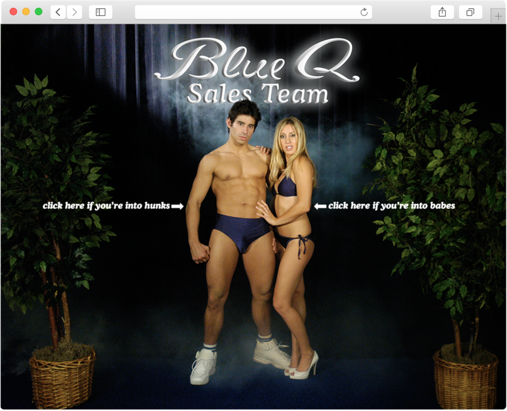 blue q sales team microsite.png