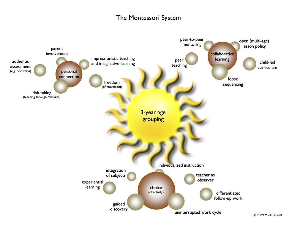 Montessori System graphic.jpg