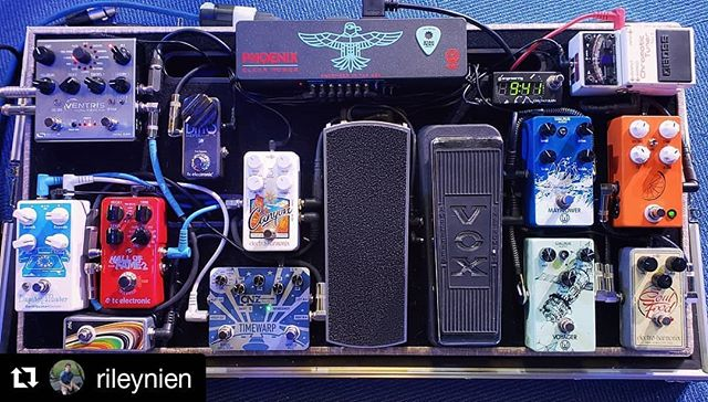 I love the variety represented on this one! ・・・ #Repost @rileynien ・・・ Just a little pedalboard update... Finally rocking the @walrusaudioeffects Phoenix and running stereo outs as well with the @sourceaudio Ventris!