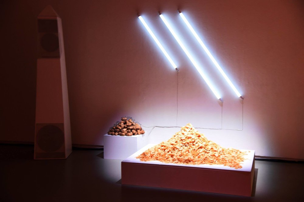 Laila Gohar's Potato circuit installation - Photo by StephenLovekin_Shutterstock