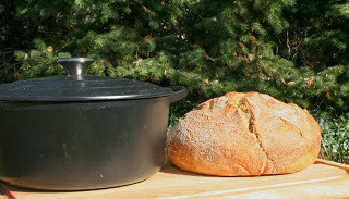 Herbes De Provence No Knead Bread.jpg