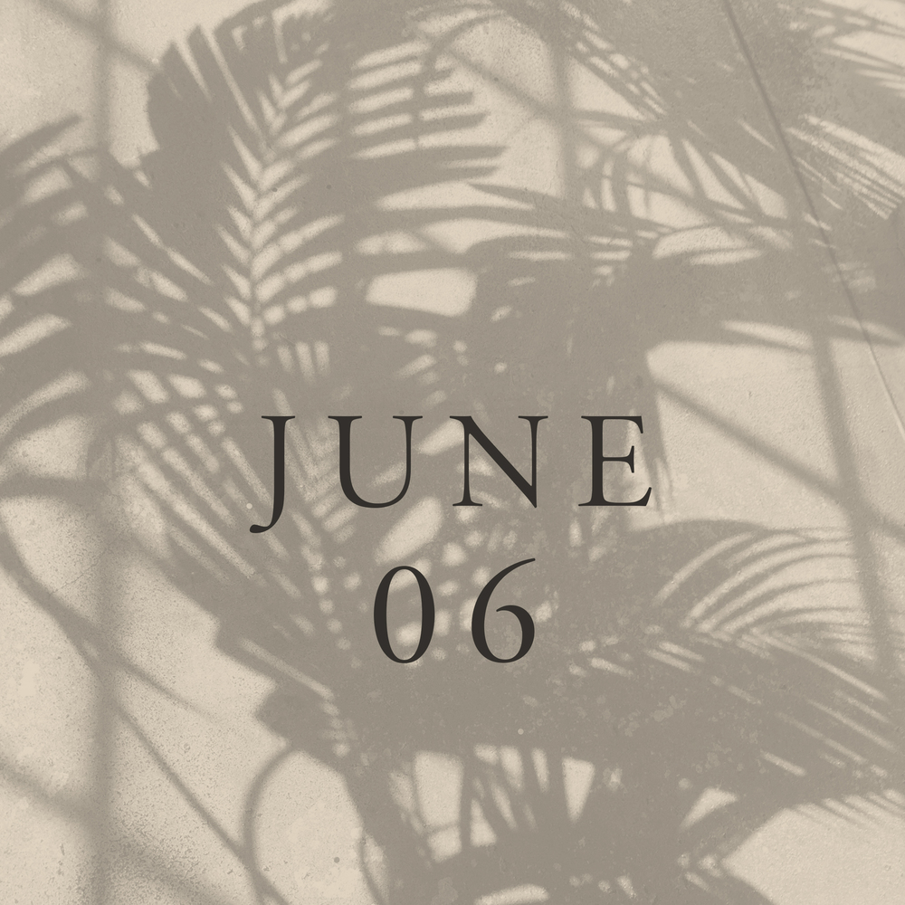 pennyweight-mixtape-06-june-cover-by-julia-kostreva.jpg