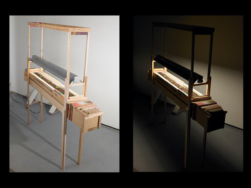 Untitled , 2011, wood, paint, fluorescent grow light,