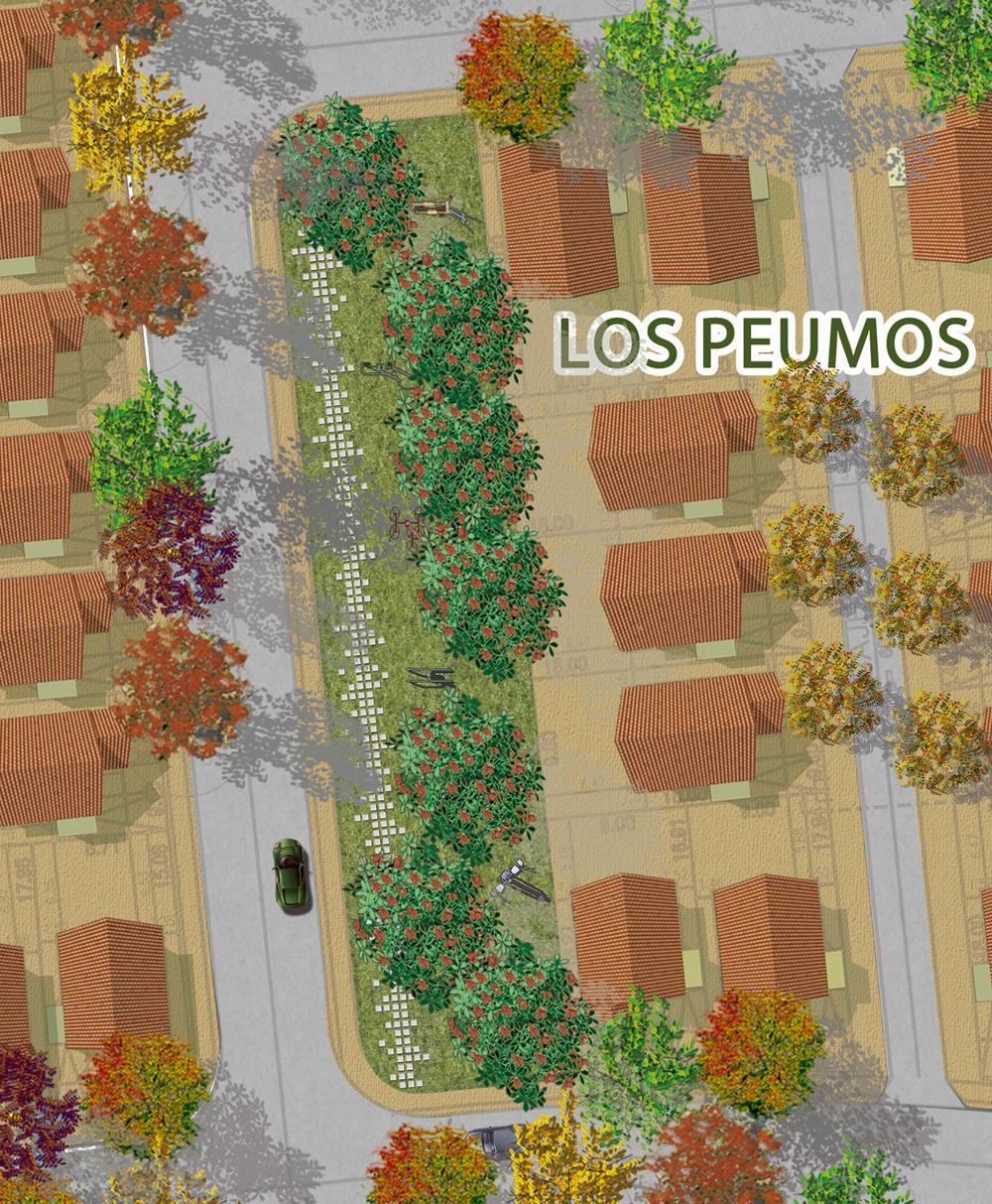 Plaza Los Maitenes