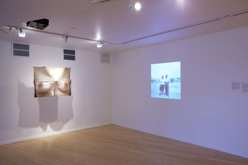 Scotoma (installation view)