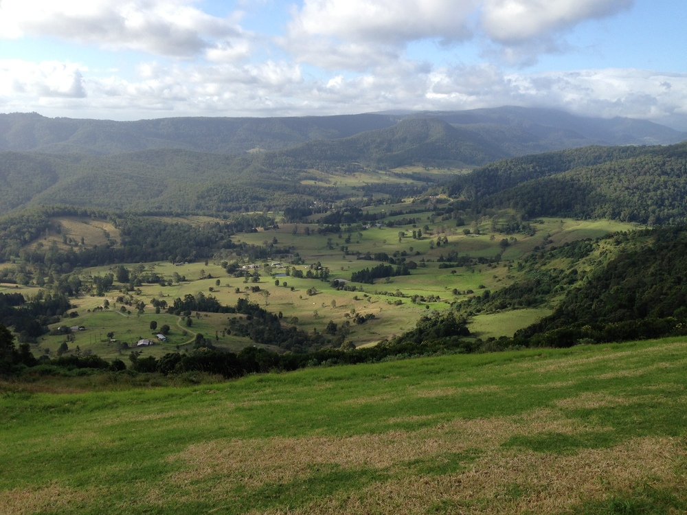 Numinbah Valley from Upper Beechmont