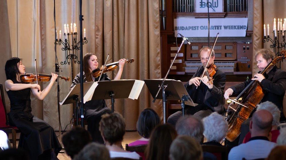 Copy of Szigeti Quartet
