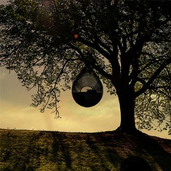C om o auxílio de uma rede, o Cocoon 1 pode ser pendurado na árvore