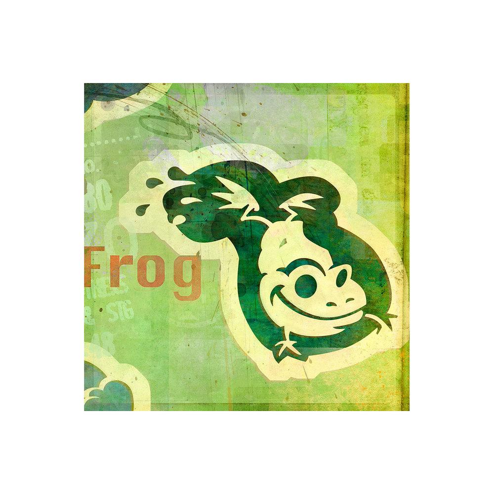 molominis_sqspc_frog.jpg