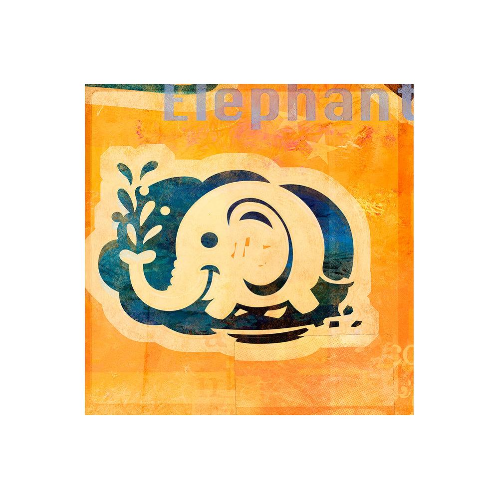 molominis_sqspc_elephant.jpg
