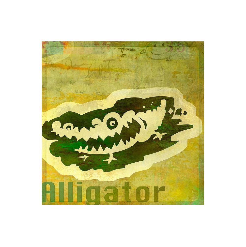 molominis_sqspc_alligator.jpg