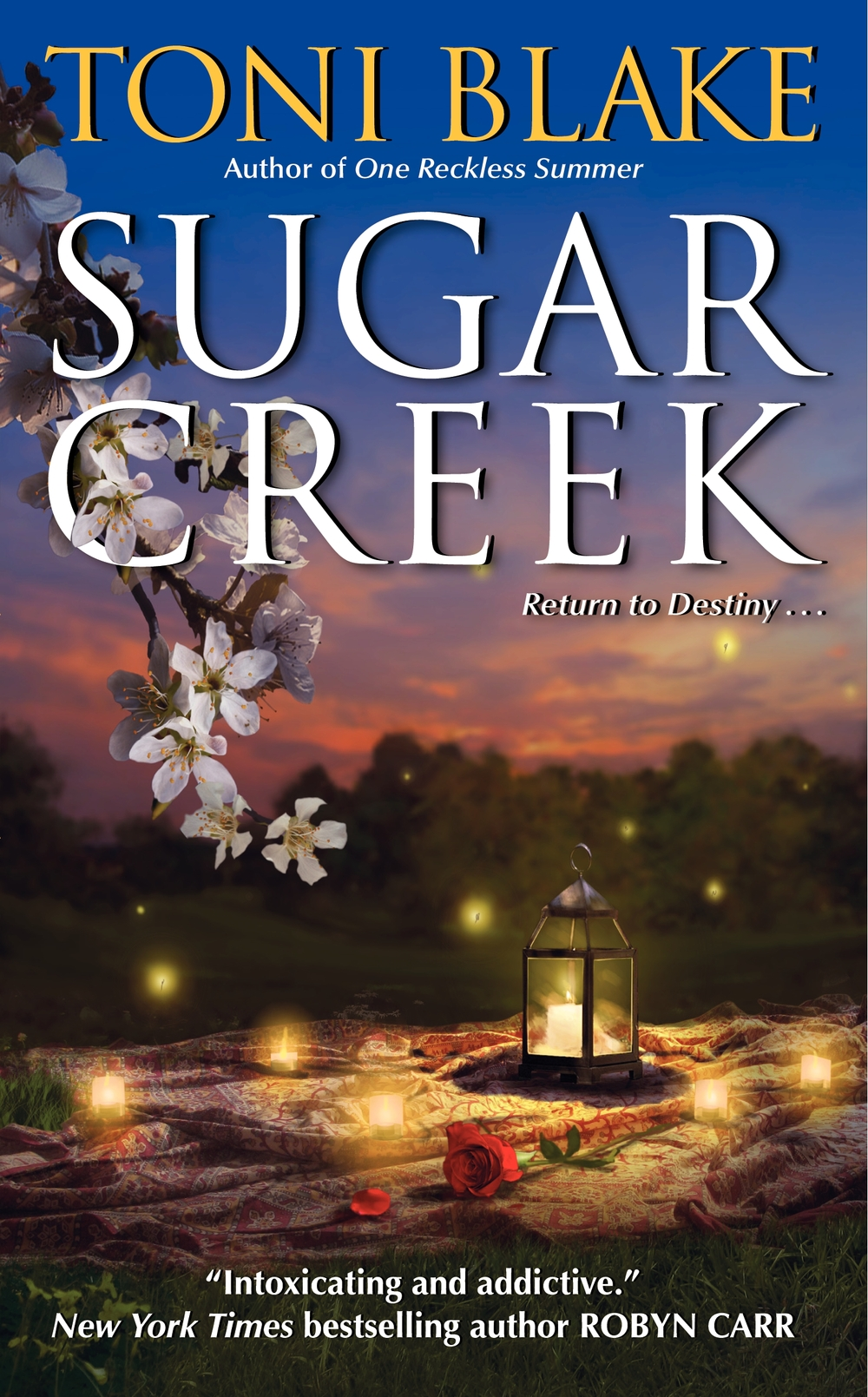 Sugar Creek Destiny Series, book 2 Mike Romo & Rachel Farris June 2010