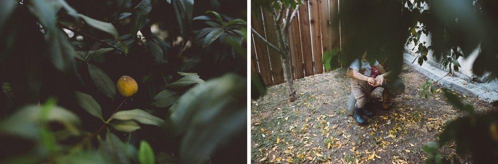 PasadenaFamilyPhotoSession_011.jpg
