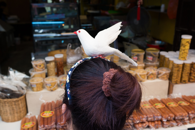 Headband with a bird