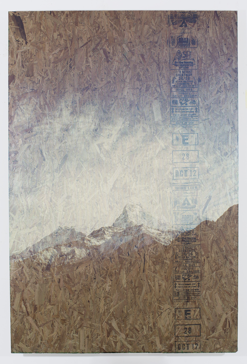 Himalayan Kush