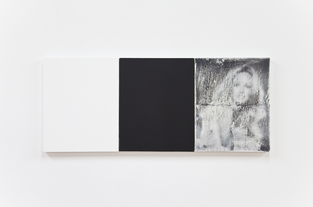 Alex Perweiler  Pigment from a Portrait  2012 Oil, wax, ink on canvas 20 x 48 inches
