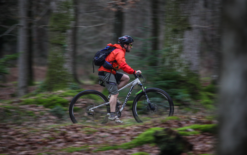 Great British MINI Adventure Day 14 - MTN Biking in the New Forest