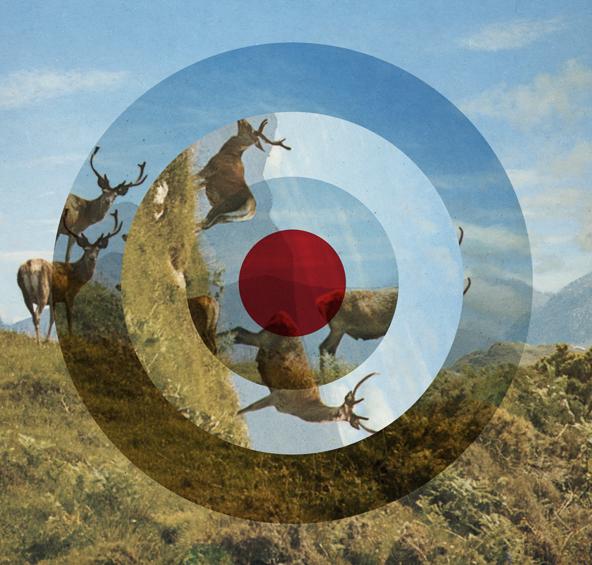 mark-lazenby---tilly-losch-album-artwork.jpg