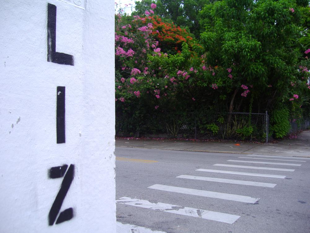 P9250146LIZ street.jpg