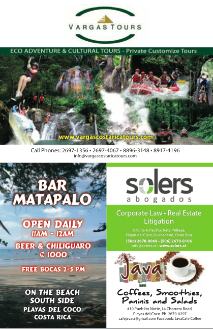 matapalo-bar-solers-java