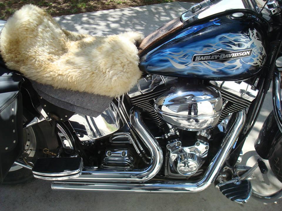 Ivan-Harley-7.jpg