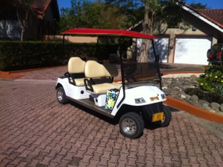 golfcart1.jpeg