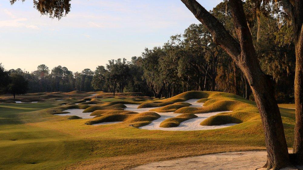 Golf Hole #8