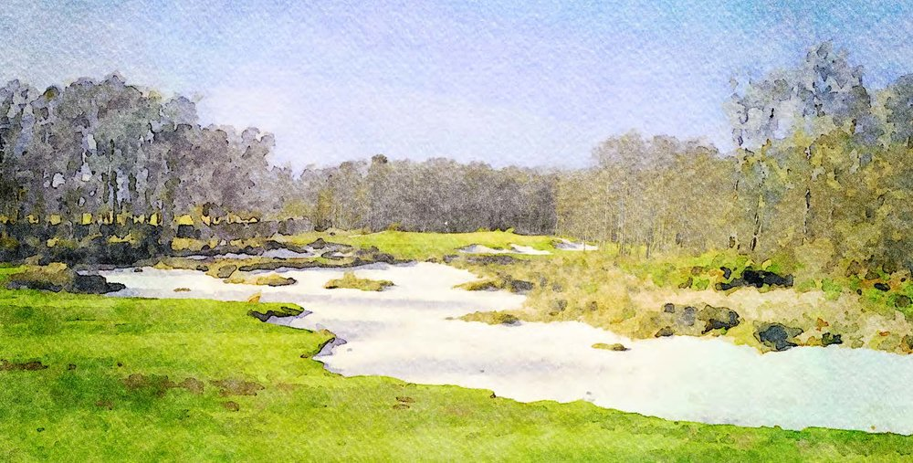 Dukes #3  - Watercolor 2 - Reduced.jpg