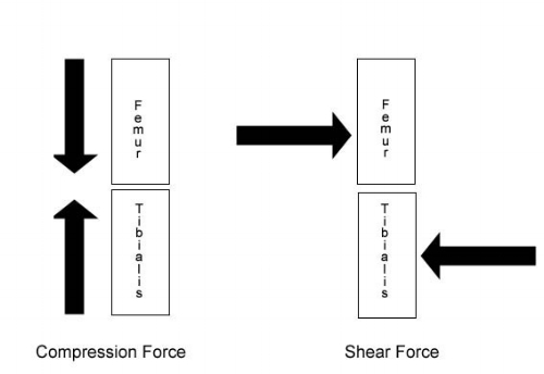 compression-shear-forces