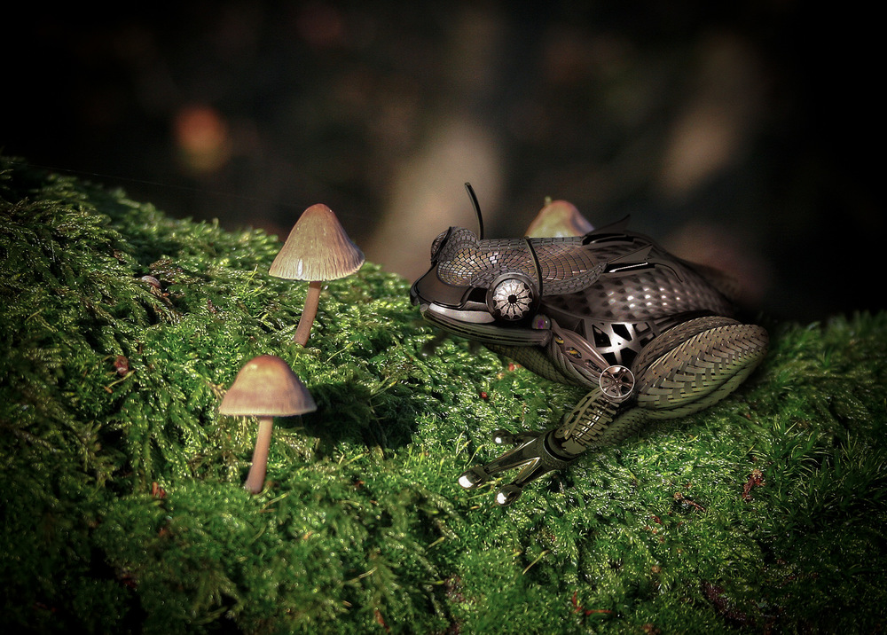 Mechanical Frog