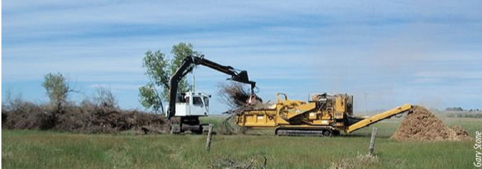 Partners are working together to investigate potential uses for tree biomass removed from sites. Piles of cut trees are stacked to create windbreaks for livestock, whereas others are mulched (shown above).