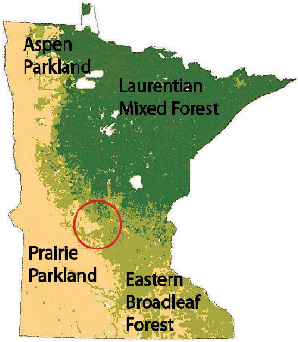 Four Minnesota Biomes. Circle indicates approximate location of Litchfield Wetland Management District in the transitional zone between woodland and prairie.