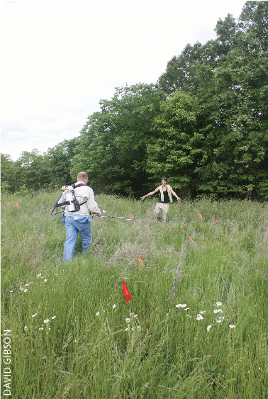 COOPERATIVE RESEARCH. Southern Illinois graduate student Lindsay Shupert guides  applicator Scott Flynn, research biologist with Dow Agrosciences, by pointing out corners of her sericea lespedeza research plots.