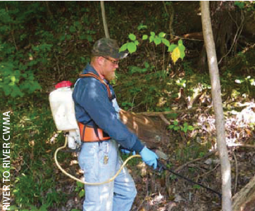 THE SOUTHERN ILLINOIS exotic plant strike team   was modeled after the National Park Service strike team program, with a mission to monitor and control invasive plants within the CWMA. Pictured left, Bruce Henry,  former Strike Team member.