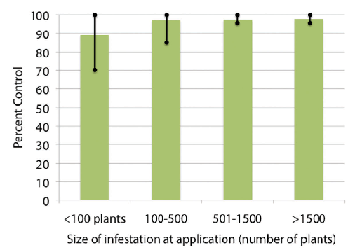 FIGURE 1. Percent of control of milk thistle plants within various infestation sizes following a fall application of Milestone herbicide at 6 fl oz/A to seedlings and rosettes. Green bars represent average percent control.