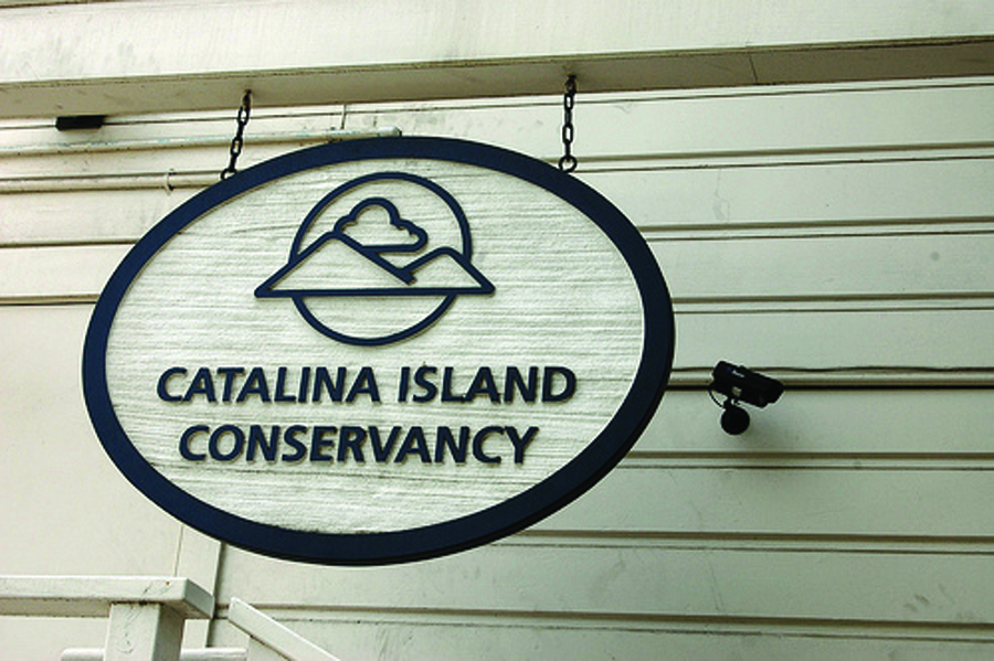 ABOUT CATALINA ISLAND CONSERVANCY