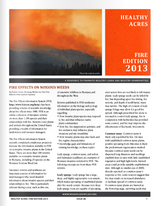 >> View 2013 Wildfire Edition