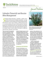 SALTCEDAR & RUSSIAN OLIVE MANAGEMENT