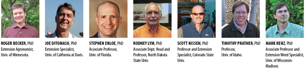 Roger Becker, PhD, Extension Agronomist, Univ. of Minnesota. Joe DiTomaso, PhD, Extension Specialist,Univ. of California at Davis (retired). Stephen Enloe, PhD, Associate Professor, Univ. of Florida. Rodney Lym, PhD, Associate Dept. Head and Professor, North Dakota State Univ. Scott Nissen, PhD, Professor and Extension Specialist, Colorado State Univ. Timothy Prather, PhD, Professor, Univ. of Idaho. Mark Renz, PhD, Associate Professor and Extension Weed Specialist, Univ. of Wisconsin-Madison.
