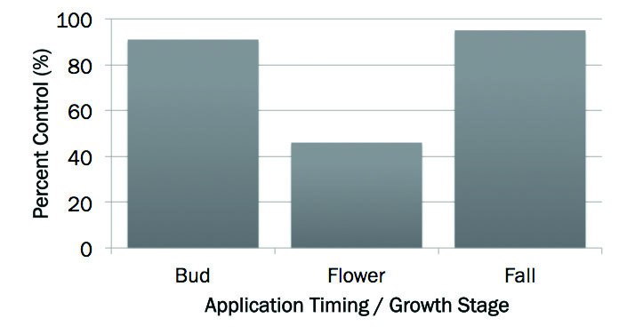 Figure. Percent control of crown vetch one year after treatment with Milestone® specialty herbicide applied at bud, flower and fall growth stages.