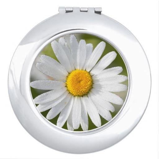 Oxeye Daisy Compact Mirror