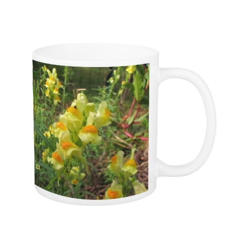 Toadflax Mug