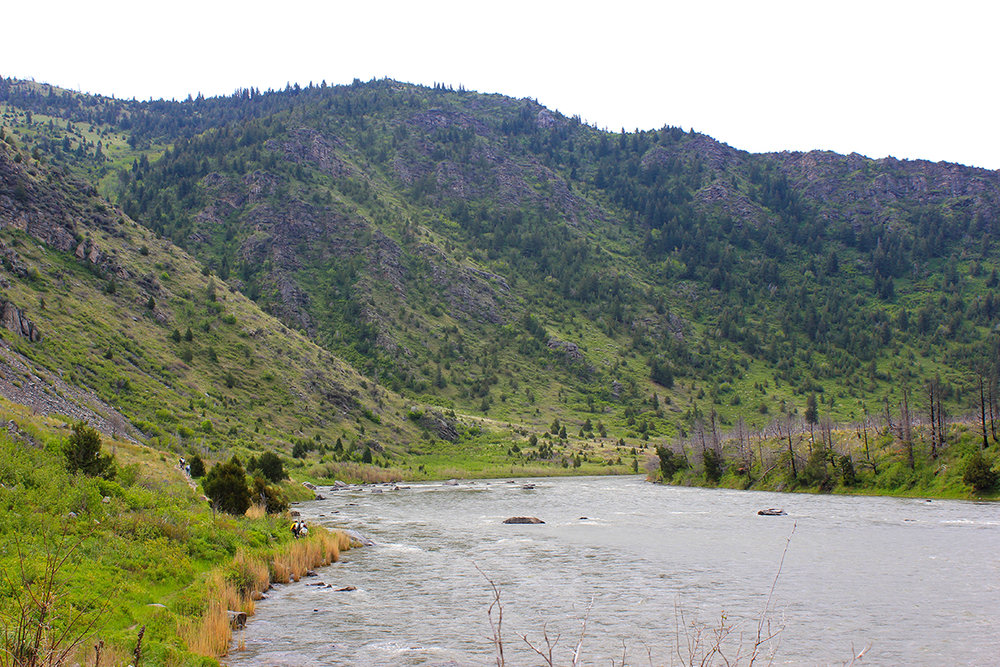 Figure 1.  The Madison River flows through lower Bear Trap Canyon.