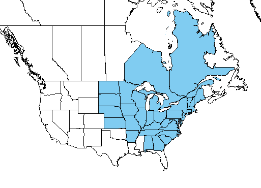Figure 1: Japanese hop distribution in the United States and Canada. States and provinces shaded in blue indicate presence of the plant (USDA Plants Database).